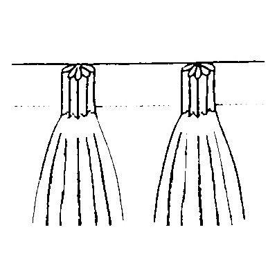 Bandex gordijnband